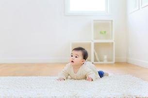リビングでうつぶせに寝そべる赤ちゃんの写真素材 [FYI02608681]