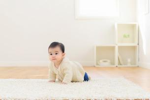 リビングでハイハイする赤ちゃんの写真素材 [FYI02609177]