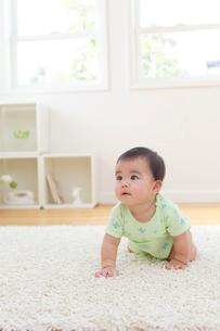 リビングでハイハイする赤ちゃんの写真素材 [FYI02609388]