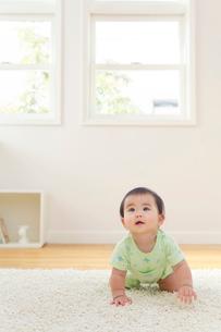 リビングでハイハイする赤ちゃんの写真素材 [FYI02609447]