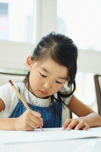 勉強をする女の子の写真素材 [FYI02615660]