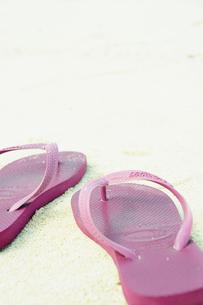 砂浜のサンダルの写真素材 [FYI02615747]