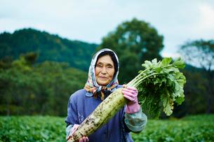 ダイコンを持つ笑顔の農婦の写真素材 [FYI02616109]