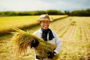 稲を抱える笑顔の農夫の写真素材 [FYI02616115]