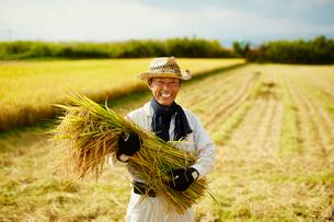 稲を抱える笑顔の農夫の写真素材 [FYI02616118]
