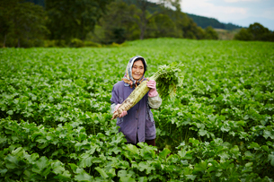 ダイコンを持つ笑顔の農婦の写真素材 [FYI02616126]