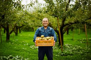 ラフランスが入った箱を持つ笑顔の農夫の写真素材 [FYI02616127]