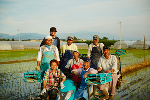 田植えした水田と農家の人達の写真素材 [FYI02616137]