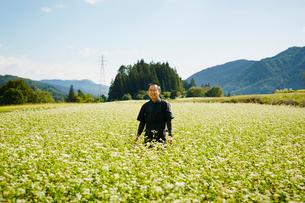 花咲くソバ畑に立つ農夫の写真素材 [FYI02616172]