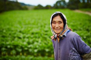 笑顔の農婦の写真素材 [FYI02616203]