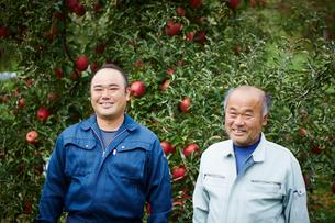 リンゴ畑の農夫2人の写真素材 [FYI02616244]