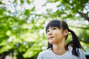 緑の木々を見上げる女の子の写真素材 [FYI02616271]