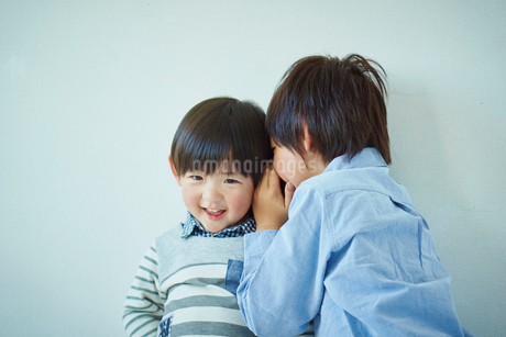 内緒話をする兄弟の写真素材 [FYI02616352]