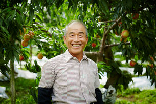 モモ畑の笑顔の農夫の写真素材 [FYI02616379]