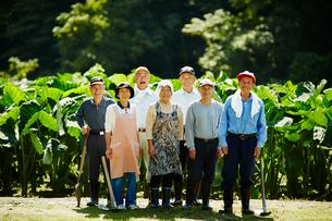 農家の人々集合の写真素材 [FYI02616657]