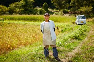 畑の前に立つ笑顔の農夫の写真素材 [FYI02616674]