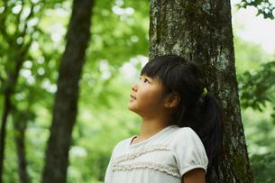 木の幹にもたれ見上げる女の子の横顔の写真素材 [FYI02616714]