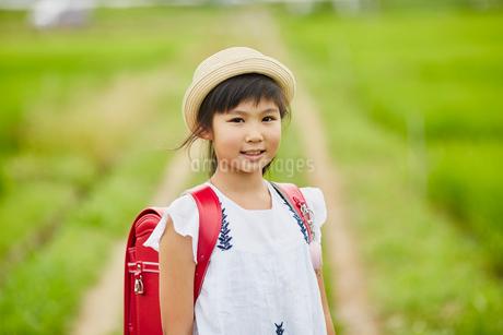 小学生の女の子ポートレートの写真素材 [FYI02617349]