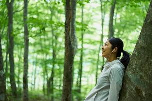 木にもたれて音楽を聴く女性の写真素材 [FYI02617831]