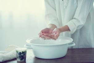 ウォッシュタブの水をすくう女性の手元の写真素材 [FYI02620305]