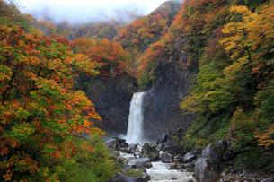 苗名滝と紅葉の写真素材 [FYI02621160]