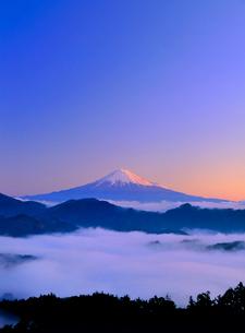 清水吉原から雲海と富士山の写真素材 [FYI02621305]