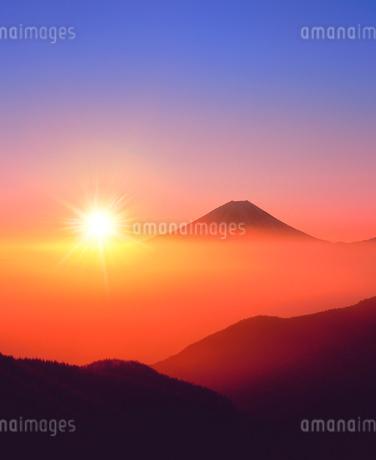 丸山林道より朝日と富士山の写真素材 [FYI02621886]