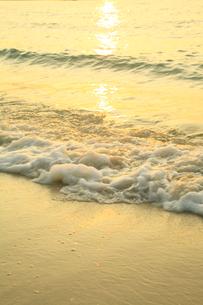南紀白浜海岸 夕照の波の写真素材 [FYI02622231]