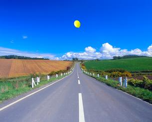 道と豆畑、牧草地、風船の写真素材 [FYI02622359]