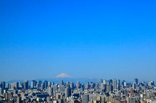 東京都心のビル群と富士山の写真素材 [FYI02622619]