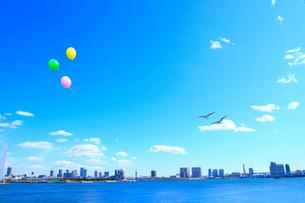 東京港より東京の街並と鳥、風船の写真素材 [FYI02623069]