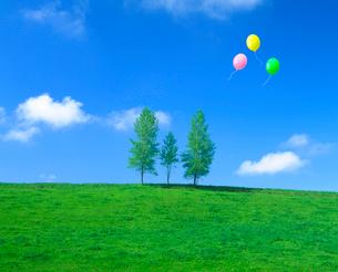親子の木と牧草地、風船の写真素材 [FYI02623090]