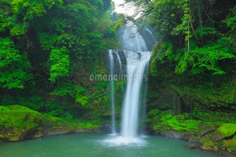 慈恩ノ滝の写真素材 [FYI02624516]