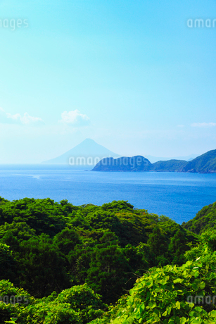 大隅半島から望む鹿児島湾 長崎鼻と開聞岳(薩摩富士)の写真素材 [FYI02624522]