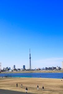 東京スカイツリーと荒川河川敷の写真素材 [FYI02625079]