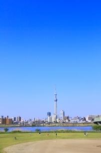 東京スカイツリーと荒川河川敷 の写真素材 [FYI02625100]