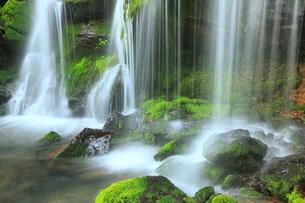 猿壺の滝と新緑の写真素材 [FYI02625294]