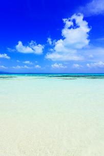 沖縄竹富島 コンドイビーチの海の写真素材 [FYI02625971]