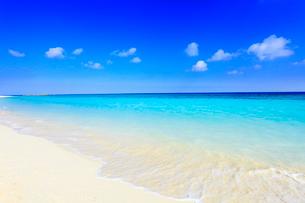 沖縄波照間島 ニシ浜と海の写真素材 [FYI02626323]