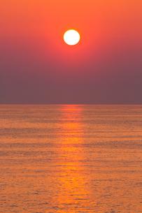 安乗岬 海と水平線に朝日の写真素材 [FYI02626554]