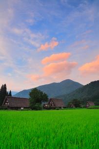 夏の白川郷に夕焼けの写真素材 [FYI02626841]