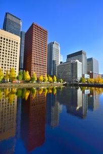 和田倉濠に映る日比谷通りのイチョウ並木と丸の内ビル群の写真素材 [FYI02627483]