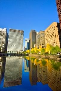 和田倉濠に映る日比谷通りのイチョウ並木と丸の内ビル群の写真素材 [FYI02627508]