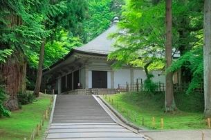新緑の中尊寺金色堂の写真素材 [FYI02627633]