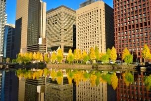和田倉濠に映る日比谷通りのイチョウ並木と丸の内ビル群の写真素材 [FYI02627656]