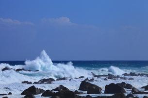 室戸岬の岩と波の写真素材 [FYI02627740]