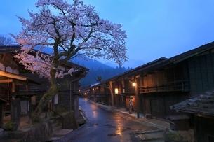木曽路 妻籠宿とサクラの夕景の写真素材 [FYI02628256]