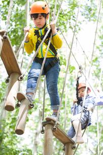 Happy children playing in tree top adventure parkの写真素材 [FYI02634711]