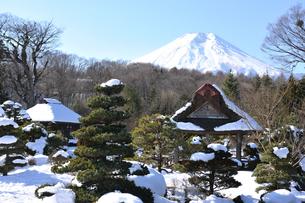 忍野村と富士山の写真素材 [FYI02640021]