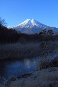 冬の忍野村と富士山の写真素材 [FYI02640085]